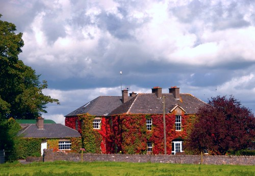 House with Boston Ivy