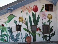 Damjl mural