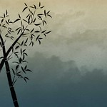 Free Bamboo Stock BackgroundsEtc Wallpaper -  Asparagus Fern Green
