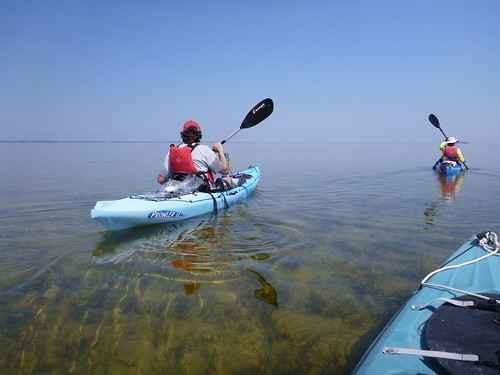 Kayaking in St. Joseph Bay