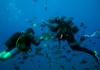 Try deep sea diving at Paphos  - Things to do in Paphos