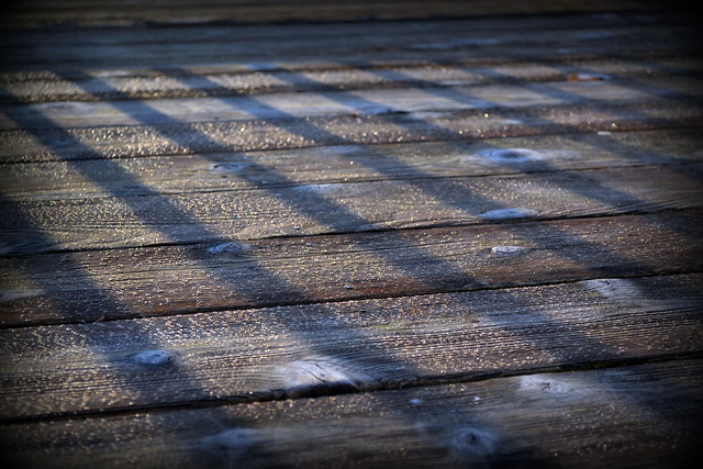 Dew on the Deck