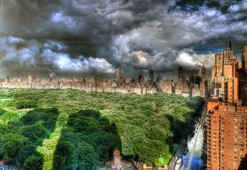 Central Park, after the deluge 8/15/2011