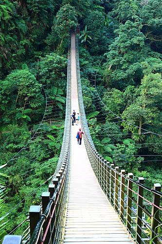 01Y6竹山天梯-梯子吊橋