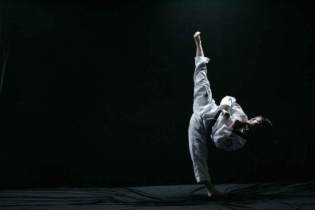 22 martial arts hd - photo #38
