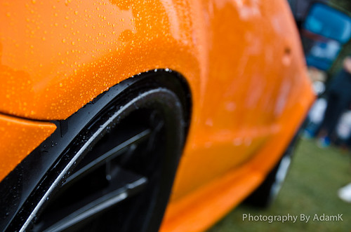 Audi RS4 Arch Shot