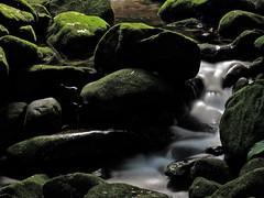 Passing Water | Água passando