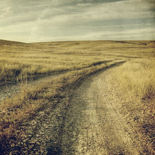 road canon square colorado afternoon goinghome grasses dirtroad grassland textured t1i