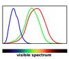 Human Color Receptors by entirelysubjective