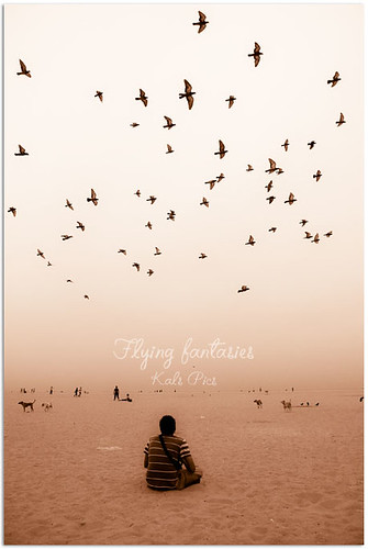 india beach birds marina landscape fly nikon pigeons wideangle fantasy 1855mm chennai cwc d40 kalspics chennaiweekendclickers