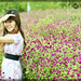 lại là Cúc Nhật by FACE2FACE STUDIO - 0987434666 | 0904653453