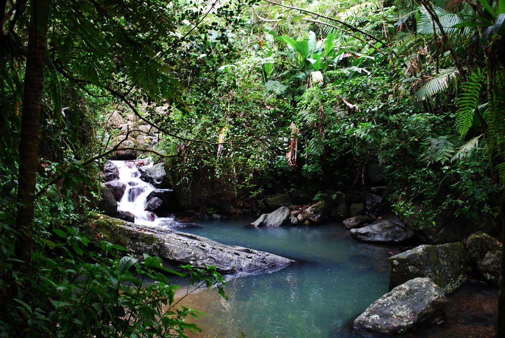 River El Yunque