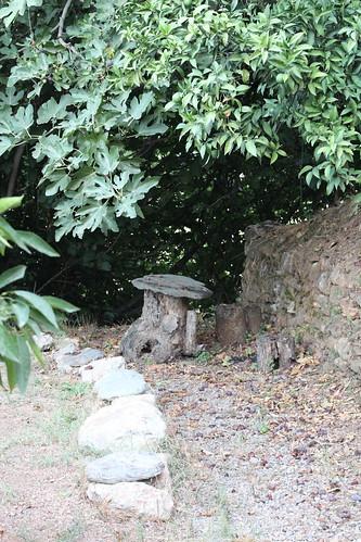 Unterm Feigenbaum