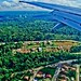 Small photo of Floresta Amazonica