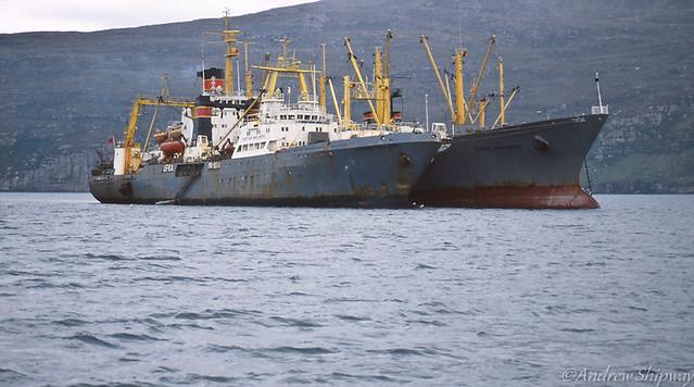 Factory Fishing Ships