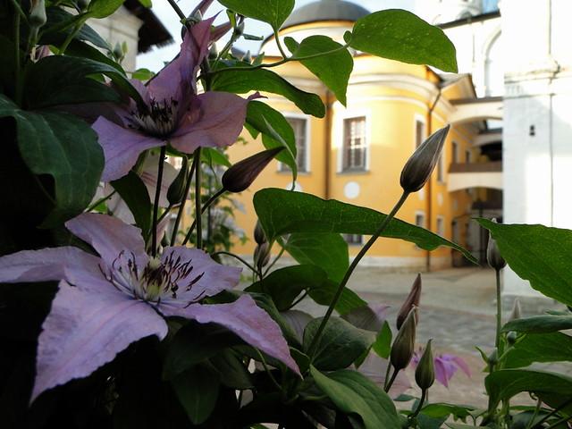 23june11_4013_Novospassky_monastery
