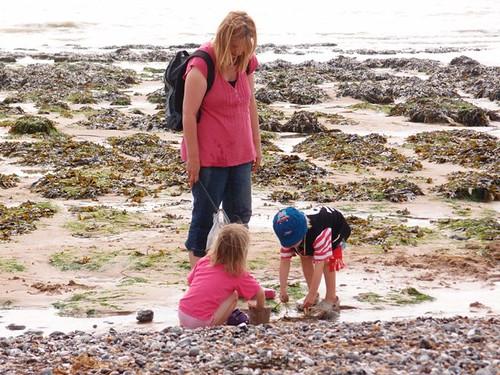 海岸資源兼具生態、經濟、國土保安、觀光遊憩、環境教育、學術研究等功能,維持自然海 岸線也維護海岸資源的生產力(圖片為柏令海峽)。