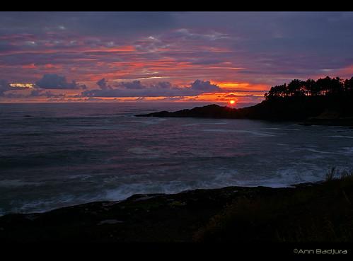 ocean trees sunset usa beach nature clouds oregon landscape scenery waves view pacificnorthwest oregoncoast rockyshore depoebay