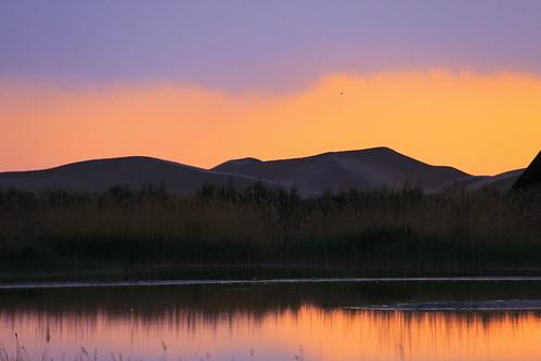 canon 2011 50d 内蒙古库布其沙漠