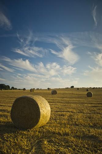 sunset field straw bales