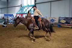 western riding(0.0), stallion(0.0), western pleasure(0.0), fair(0.0), jockey(0.0), barrel racing(0.0), animal sports(1.0), rodeo(1.0), equestrianism(1.0), mare(1.0), equestrian sport(1.0), sports(1.0), charreada(1.0), horse(1.0),