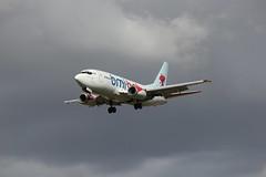 planes 317