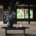 Zen places