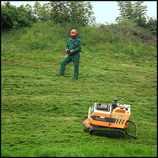 grass cutting robot