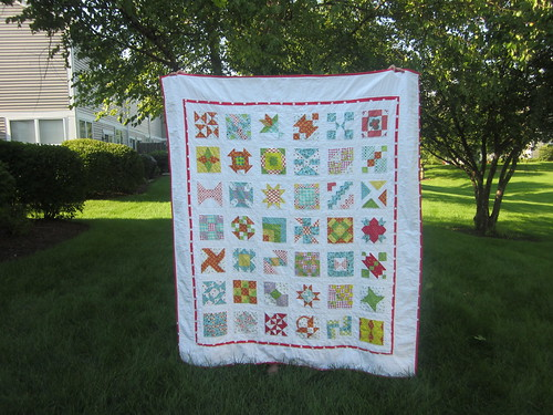 Farmer's wife quilt (twin size)