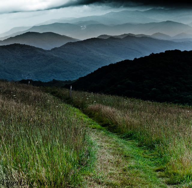 Max Patch - Wikipedia
