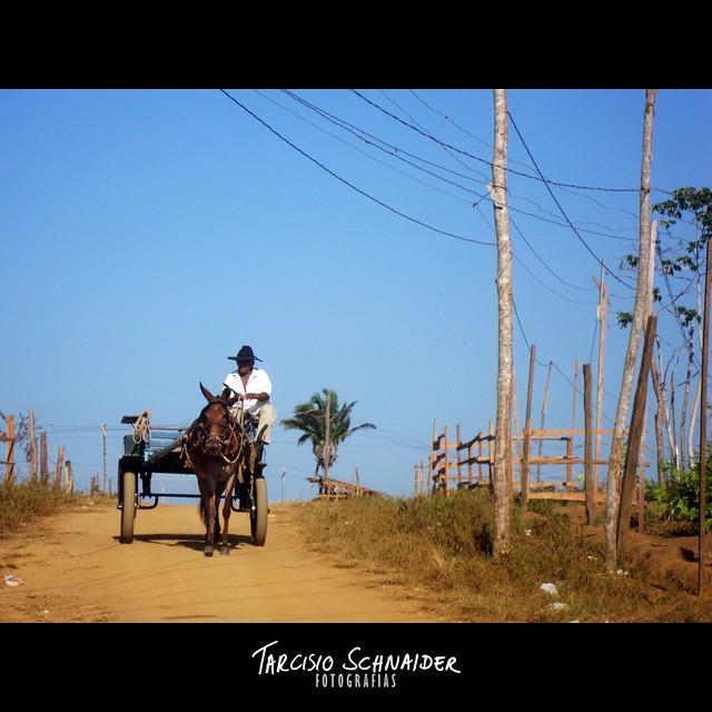 Transporte rural