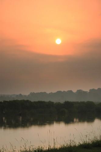 sun eye nature sunrise nikond70 rawr augustaga eyeinthesky phinizyswamp phinizyswampnaturepark sigmaaf70300mmf456apodgmacrolens