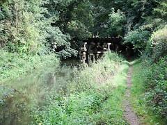 Trestle Bridge Wickham Bishops Witham To Maldon Line 27th August 2011