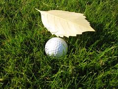 Karana Downs Golf Course