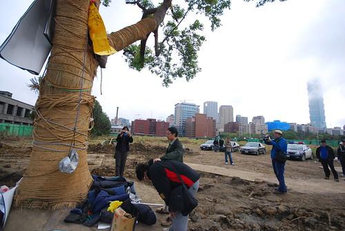 還記得松菸最後一棵老樟樹嗎?2009年228移植現場。看著溫炳原歷經一夜的抱樹行動(此刻仍待在樹上),游藝(松菸公園催生聯盟召集人)對著老樹悲從中來,泣不成聲,潘翰聲在一旁陪伴。