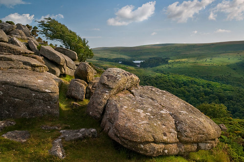 STRONG WINDS - MEL TOR LANDSCAPE, DARTMOOR
