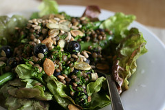 Lentil and Blueberry Salad