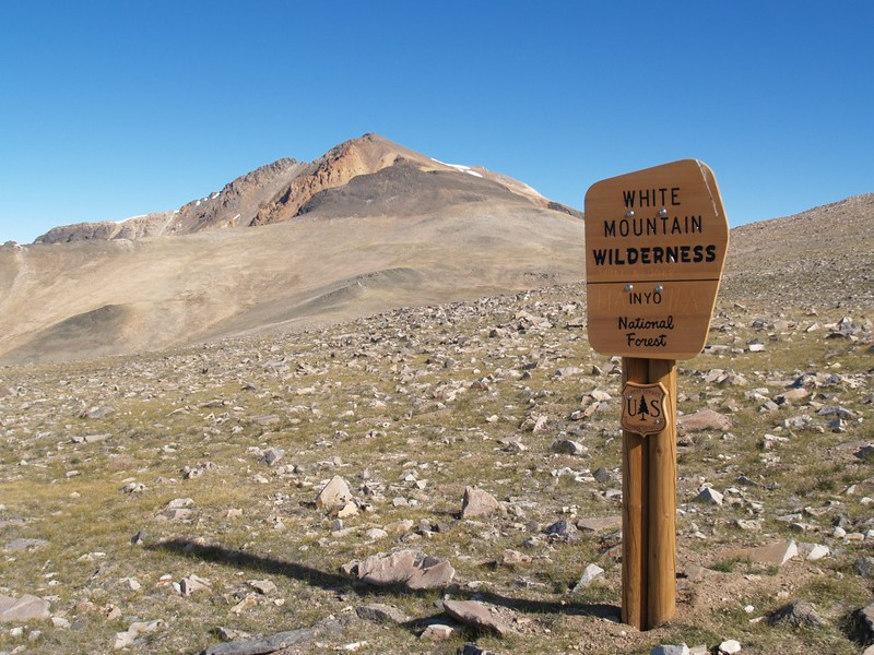 White Mountain Wilderness sign, out in the middle of nowhere