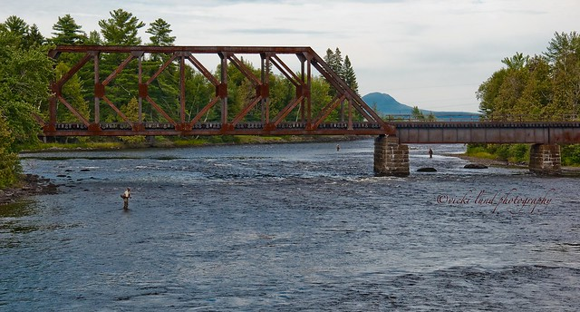 Fly Fishing in Moosehead Lake