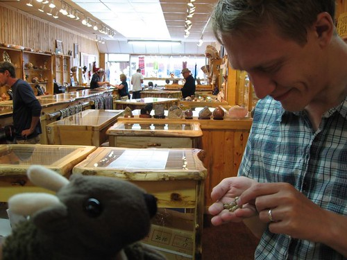 Buddy Bison shops for beads at a rock shop in West Yellowstone, MT— with Bayle Shanks.