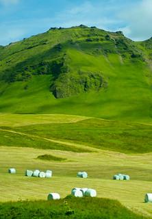 Countryside Vista