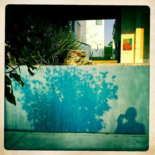color sunrise florida gainesville 365 iphone