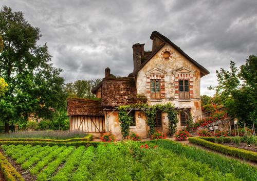 Jak užitečně využít zahradu