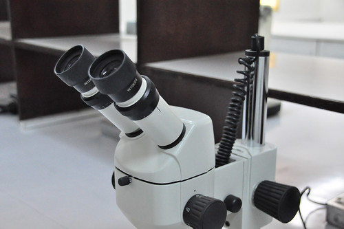 Microscope at Bioscience Center
