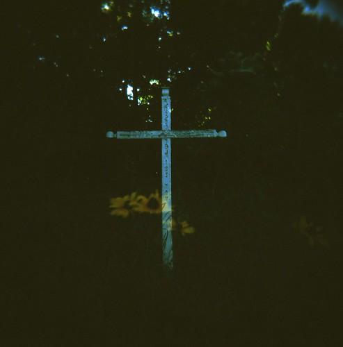 memorial, black-eyed susans