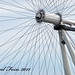 The Eye of the London Eye