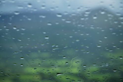 Rain in Glen of Aherlow