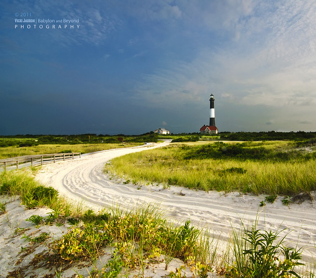 Fire Island: Road To The Fire Island Lighthouse At Sunrise