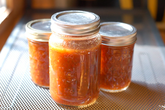 Freshly canned salsa by Eve Fox, Garden of Eating blog, copyright 2011