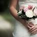 Wedding Bells by Ali Paul